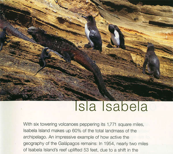 Celebrity Cruises/Celebrity Xpeditions Guide to the Galápagos